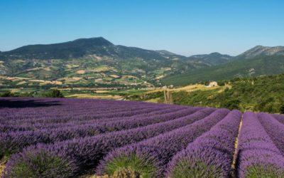 Les cinq plus beaux villages à visiter en Provence
