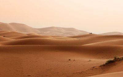 Le Musée saharien du Crès : la collection monumentale d'un passionné du désert