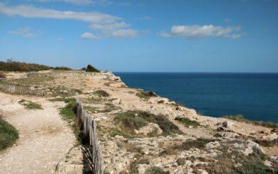 Le parc naturel régional de la Narbonnaise : biodiversité et panoramas au gré des sentiers