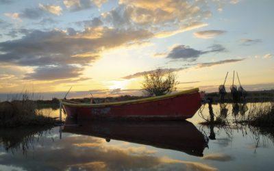 Évasion tout en douceur au bord de l'étang de l'Or avec le sentier de Mauguio